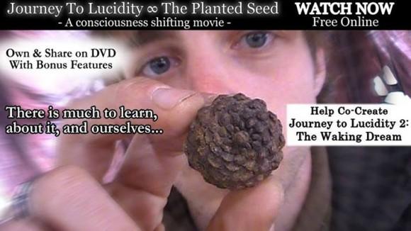 journey to lucidity